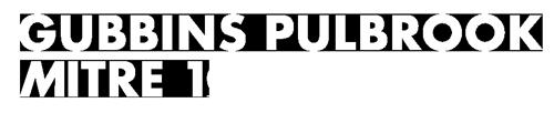 Gubbins Pullbrook Mitre 10