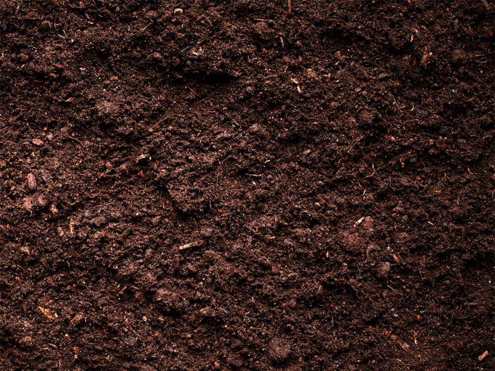 turf blend mix at gubbins pulbrook mitre 10